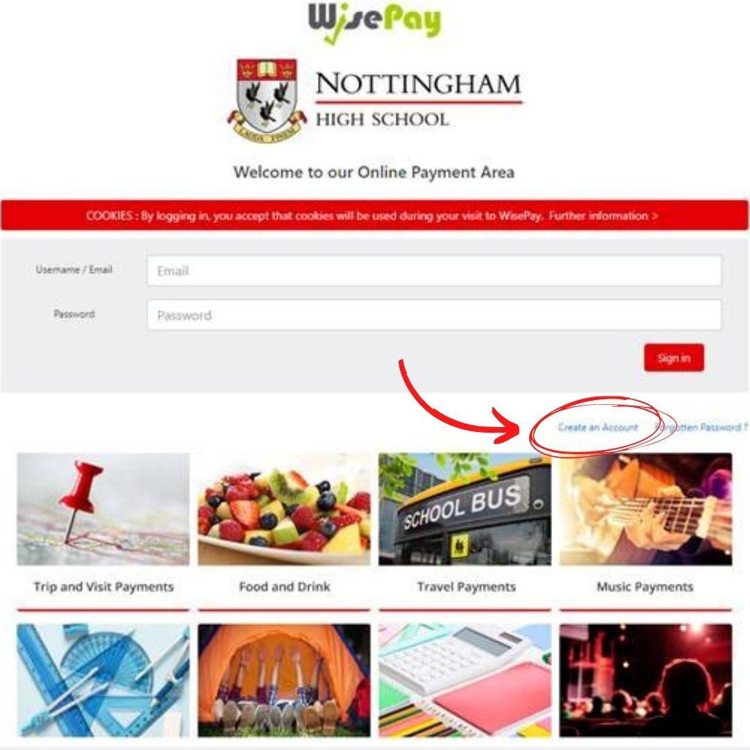 snapshot of wisepay website